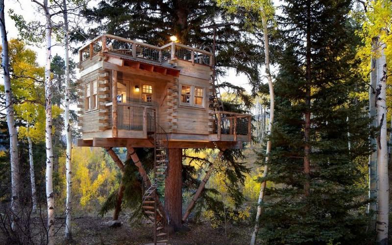 Домик на дереве tree house