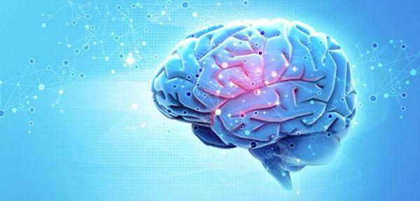 Активность мозга 2018
